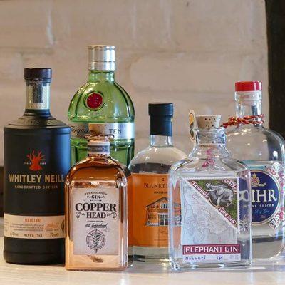 Gin Tasting in Barsbüttel-Willinghusen