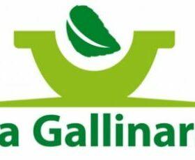La Gallinara
